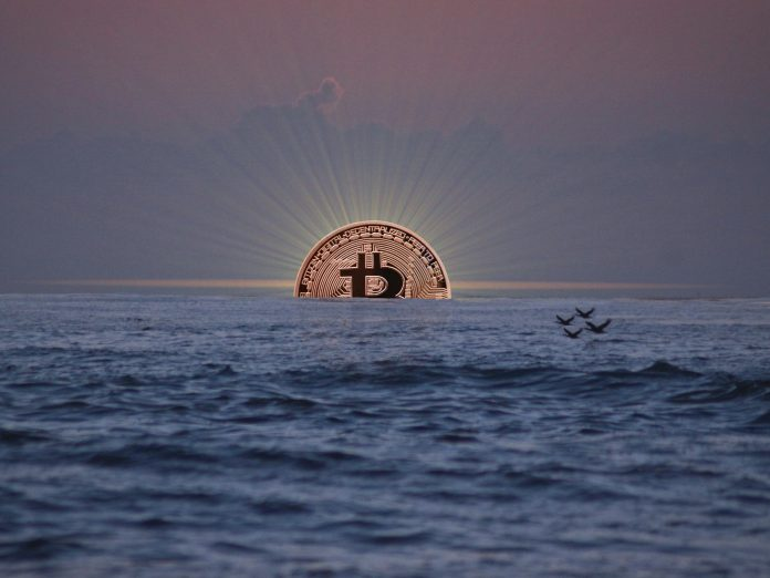 Bitcoin has risen 12% today, says Peter Brandt