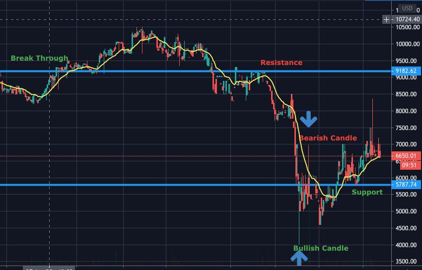 Basics of Trading