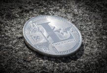 Litecoin cryptocurrency, increase of 330%