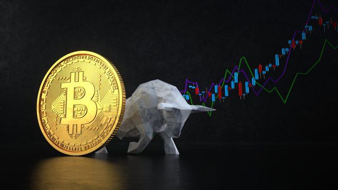Bitcoin bull market is still persisting
