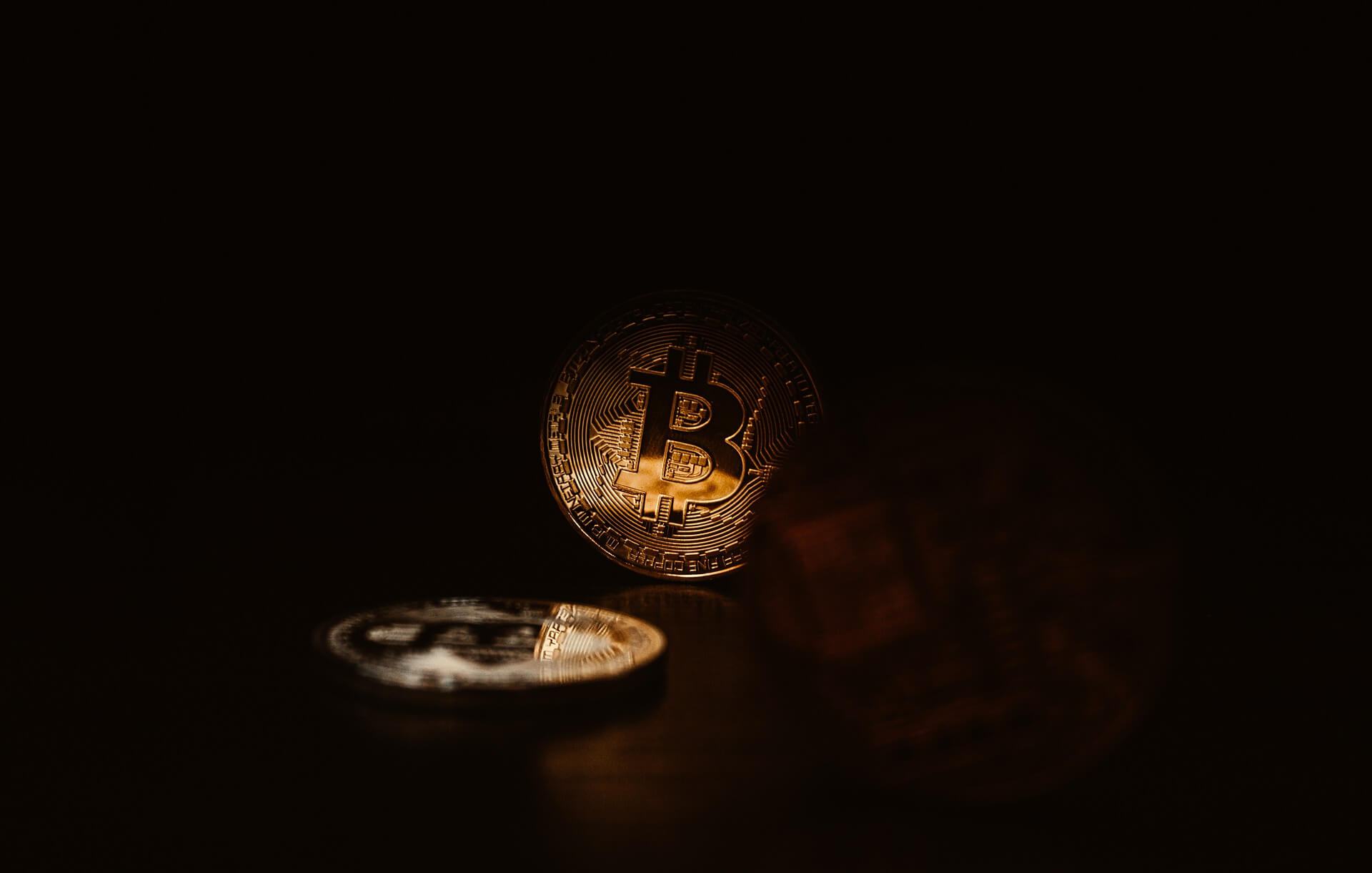 Bitcoin price now after it has grown