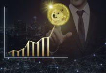 Crypto Market News - Solana, Monero a Dogecoin
