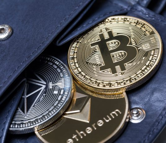 Bitcoin price history and future along with ethereum